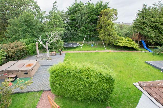 Garden Overview Rear (Copy)
