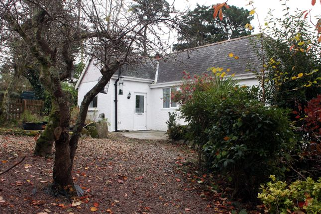 Thumbnail Detached bungalow to rent in Trelawney Road, Tavistock