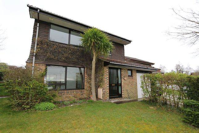Thumbnail Detached house for sale in The Gallops, Lewes, East Sussex