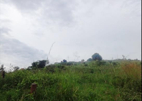 Thumbnail Property for sale in Kampala, Uganda