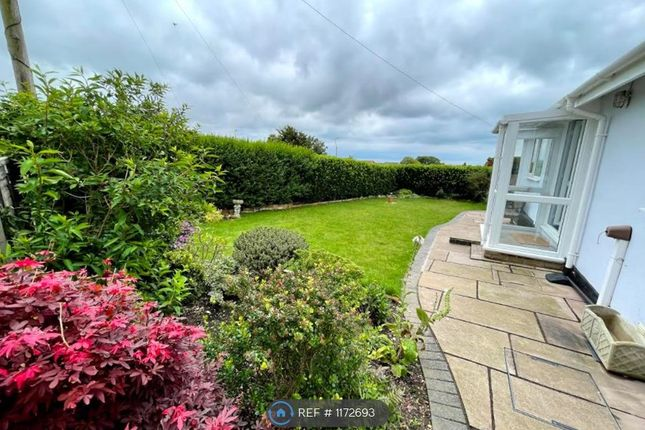 2 bed bungalow to rent in Helena Road, Brighton BN2