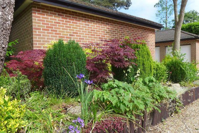 Glenmoor Road West Parley Ferndown Bh22 2 Bedroom Flat