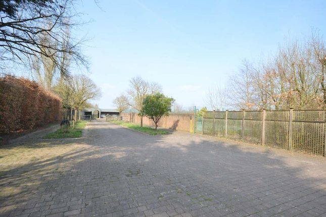 Private Drive To Stable Yard