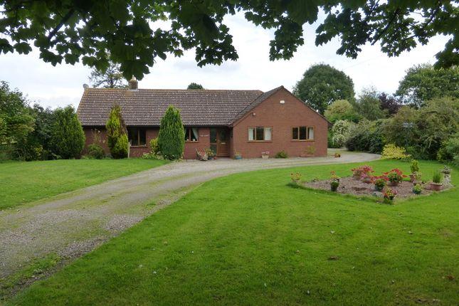 Thumbnail Detached bungalow for sale in Sandhurst Lane, Sandhurst, Gloucester