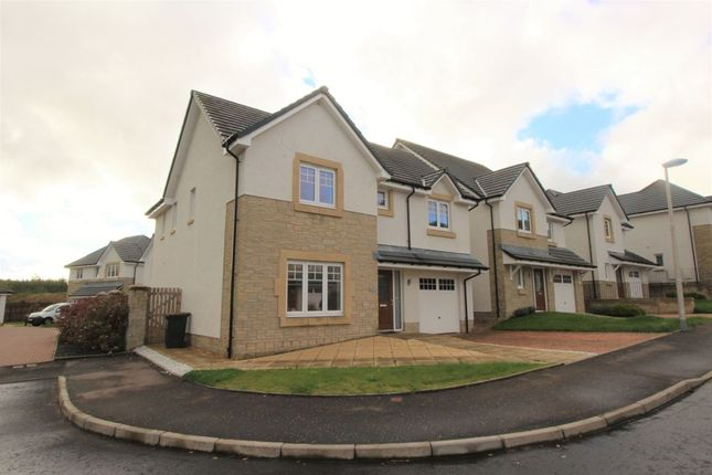 Detached house to rent in Millview Close, Auchterarder