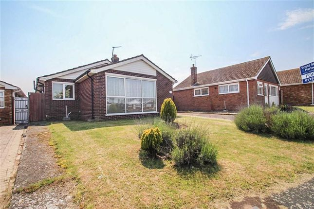Thumbnail Detached bungalow for sale in Norfolk Avenue, Holland-On-Sea, Clacton-On-Sea