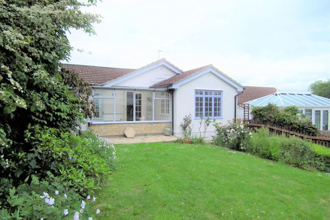 Thumbnail Detached bungalow to rent in Ashley Road, Marnhull, Sturminster Newton