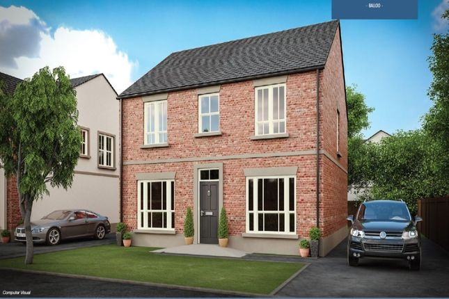 Thumbnail Detached house for sale in Saintfield Road, Killinchy, Newtownards