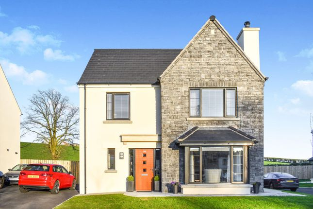 Thumbnail Detached house for sale in Bishops Green, Banbridge