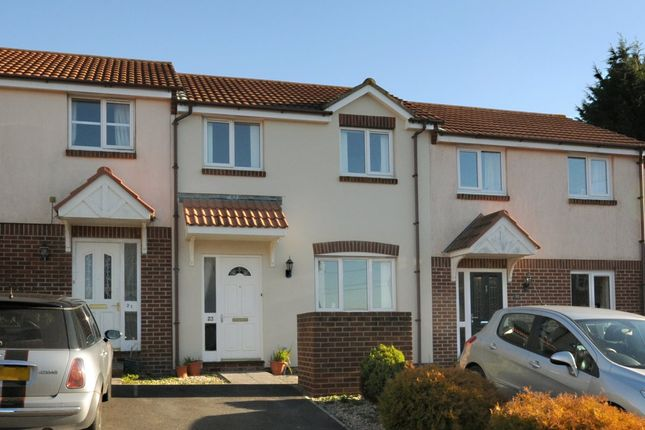 Thumbnail Terraced house to rent in Skye Close, Torquay
