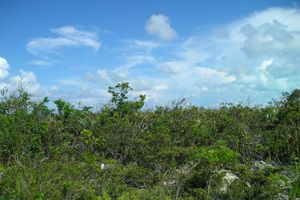 Land for sale in Sunset Beach, Long Island, The Bahamas