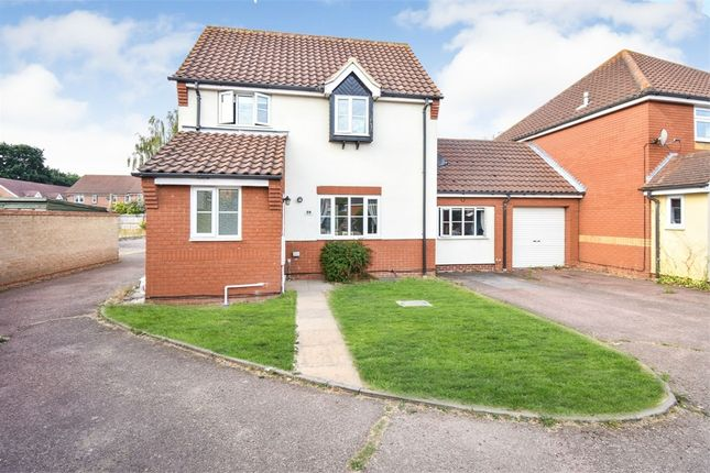 Thumbnail Link-detached house for sale in Constance Close, Witham, Essex