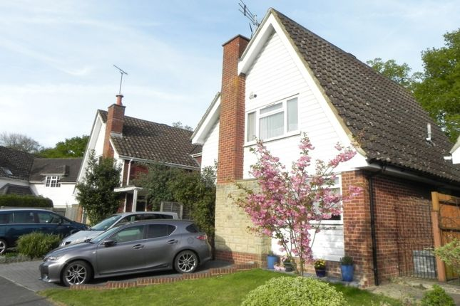 Thumbnail Detached house to rent in Broomfield Drive, Billingshurst