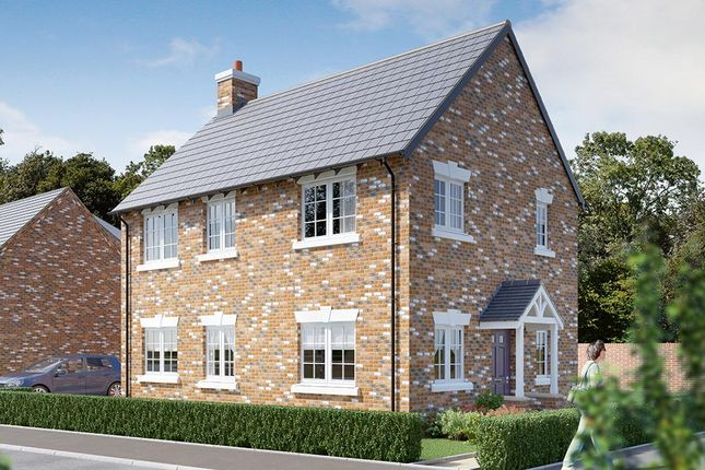 "Thumbnail Detached house for sale in ""The Shrewsbury"" at Dark Lane, Whatton, Nottingham"