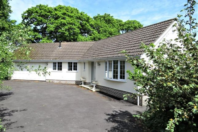 Thumbnail Bungalow for sale in Barton Common Road, New Milton