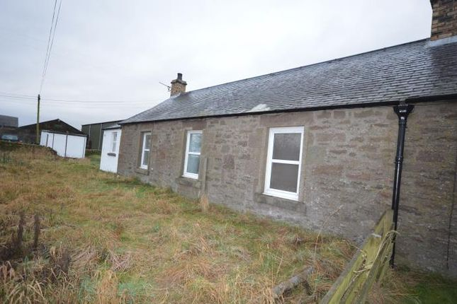 Thumbnail Flat to rent in Meigle, Blairgowrie