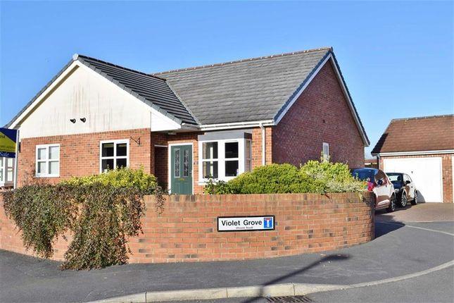 Thumbnail Property for sale in Violet Grove, Garstang, Preston