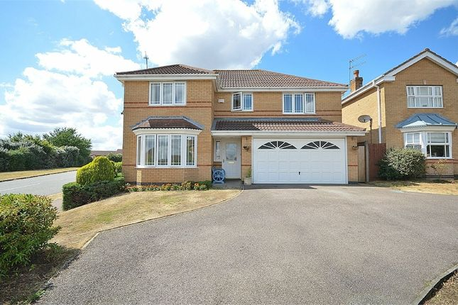 Thumbnail Detached house for sale in Little Greeve Way, Wootton, Northampton