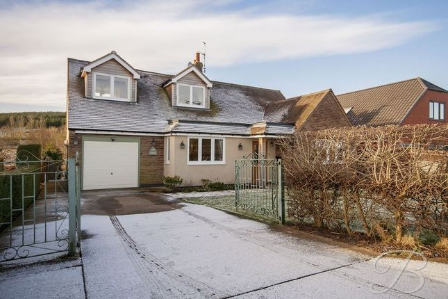 Thumbnail Detached bungalow for sale in Northfield Avenue, Pleasley Vale, Mansfield
