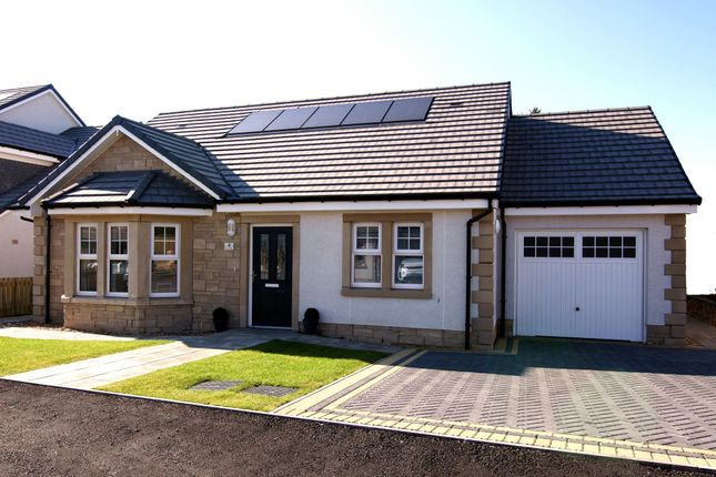 Thumbnail Detached bungalow for sale in Rigg Road, Auchinleck, Cumnock