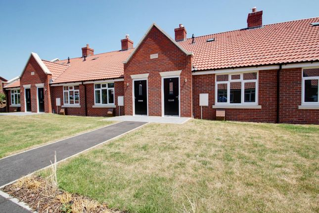 Thumbnail Semi-detached bungalow for sale in Ernest Luff Court, Luff Way, Walton-On-The-Naze