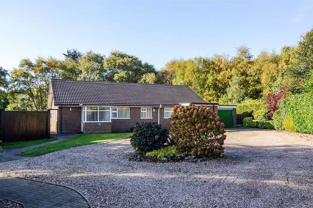 Thumbnail Detached bungalow for sale in Seeds Lane, Brownhills, Walsall