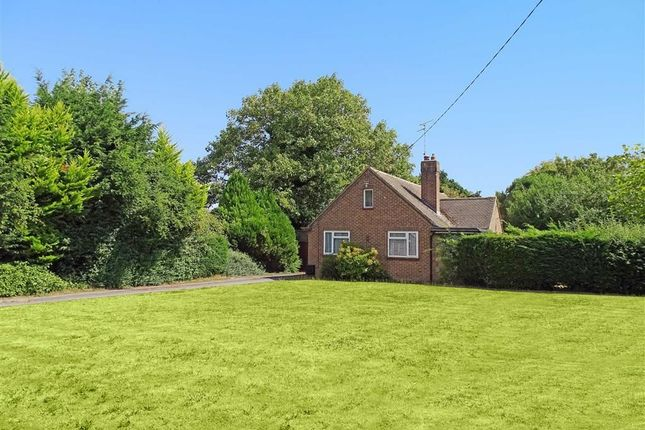 Thumbnail Detached bungalow for sale in Copland Close, Chelmsford, Essex
