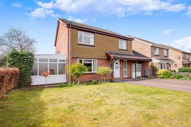 Thumbnail Detached house for sale in Bahram Road, Bessacarr, Doncaster