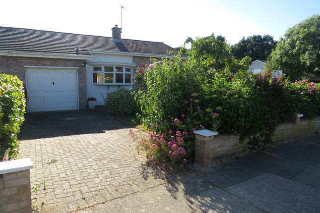 Thumbnail Semi-detached bungalow for sale in St. Austell Road, Colchester