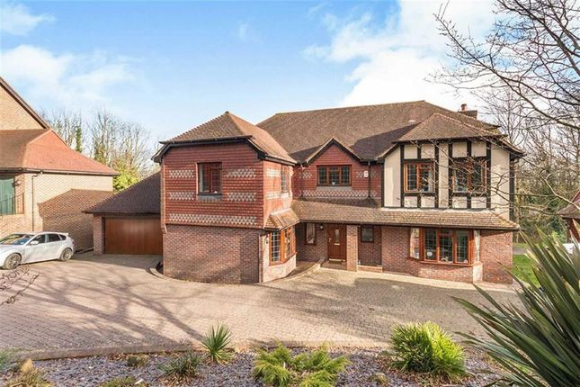 Thumbnail Property for sale in St Kitts Close, St Leonards-On-Sea, East Sussex