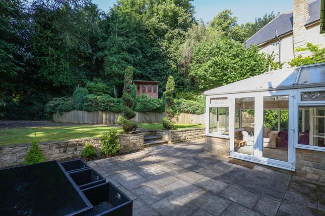 Thumbnail Detached house to rent in Holt House Grove, Sheffield