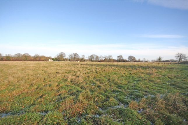 Thumbnail Land for sale in Lingfield Common Road, Lingfield
