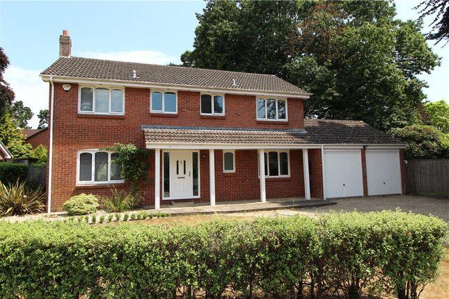 Thumbnail Detached house for sale in The Laurels, Ferndown