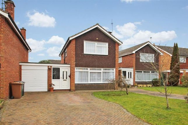 Thumbnail Detached house for sale in Willow Drive, Ripley, Woking