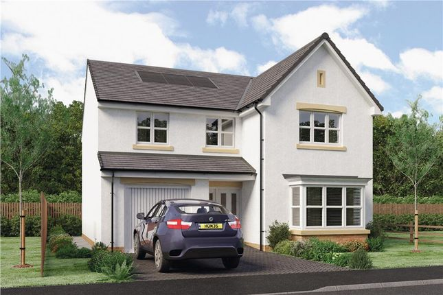 """Thumbnail Detached house for sale in """"Mackie"""" at Hawkhead Road, Paisley"""