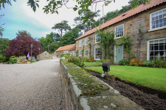 Thumbnail Detached house for sale in Dalehouse, Staithes