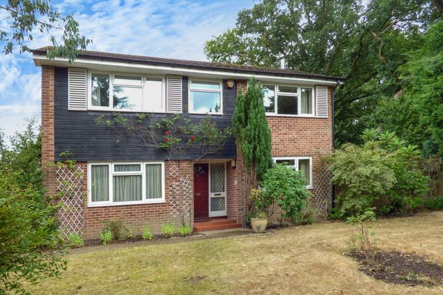 Thumbnail Detached house to rent in Bepton Close, Midhurst