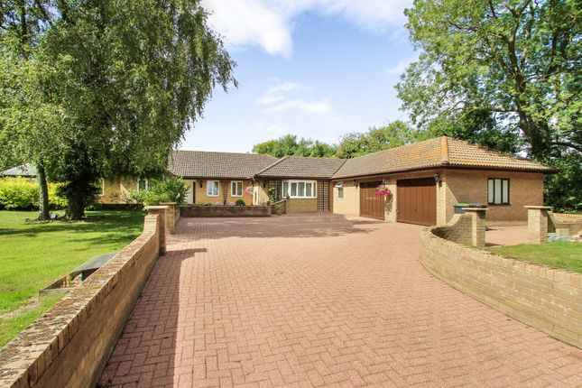 5 bed detached bungalow for sale in Rattlesden, Bury St Edmunds, Suffolk