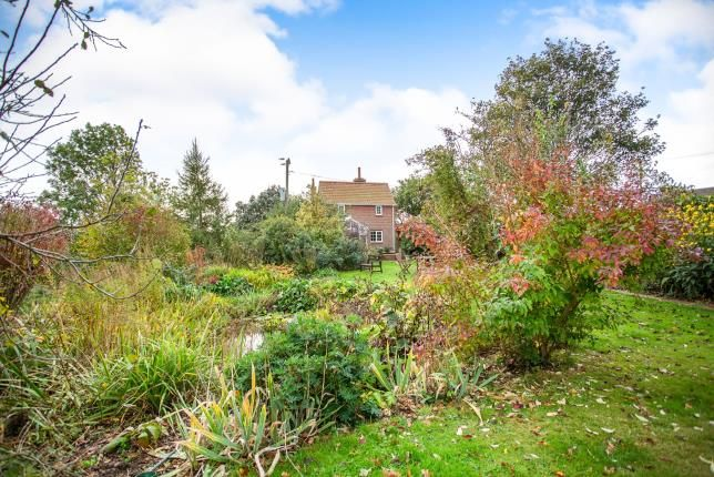 Thumbnail Detached house for sale in South Walsham, Norfolk