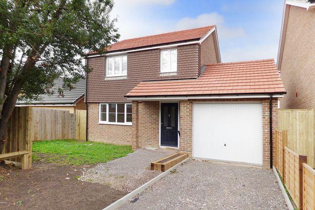 Thumbnail Detached house for sale in Elsie Cottages, Toddington Lane, Littlehampton