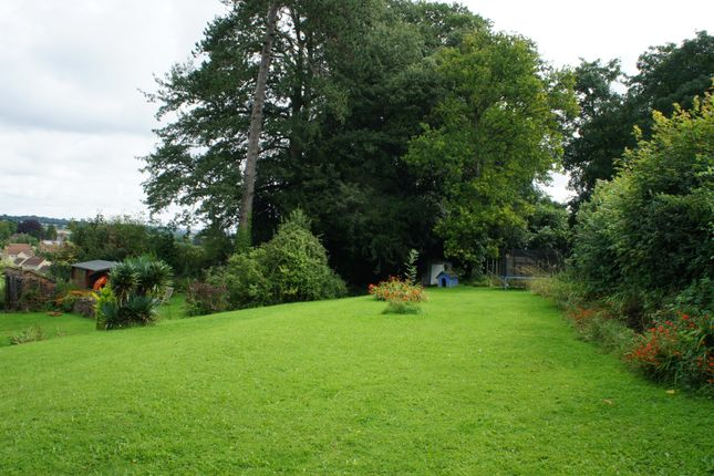 Garden of Lodge Hill, East Coker BA22