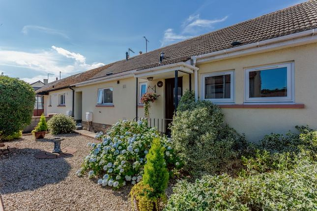 Thumbnail Terraced bungalow for sale in Murrayfield, Fochabers