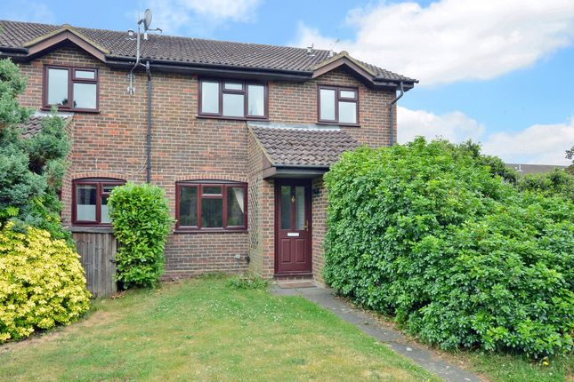 Thumbnail Mews house to rent in Spruce Drive, Lightwater