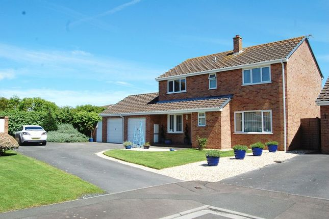 Thumbnail Detached house for sale in Eastleigh Close, Burnham-On-Sea