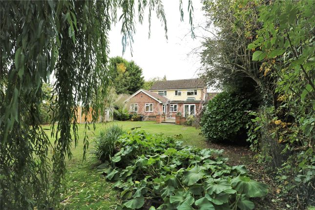 Thumbnail Link-detached house for sale in Mors End, Stratford St. Mary, Colchester, Suffolk