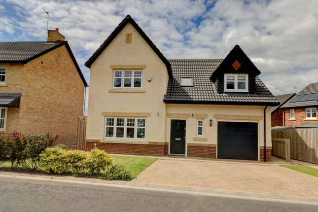 Thumbnail Detached house for sale in Ponds Court Business Park, Genesis Way, Consett