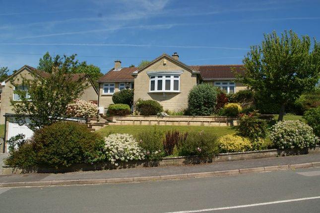 Thumbnail Detached bungalow for sale in Napier Road, Bath
