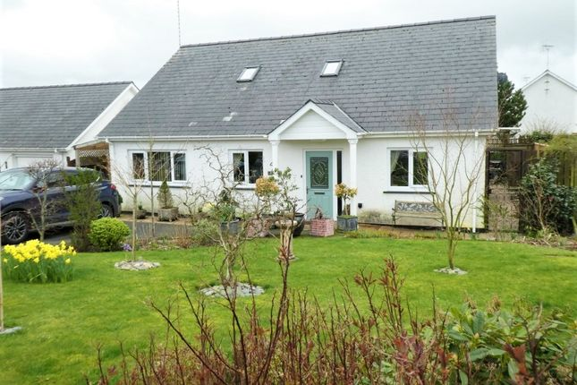 Thumbnail Bungalow for sale in 10 Cwrt Maesmynach, Cribyn, Lampeter