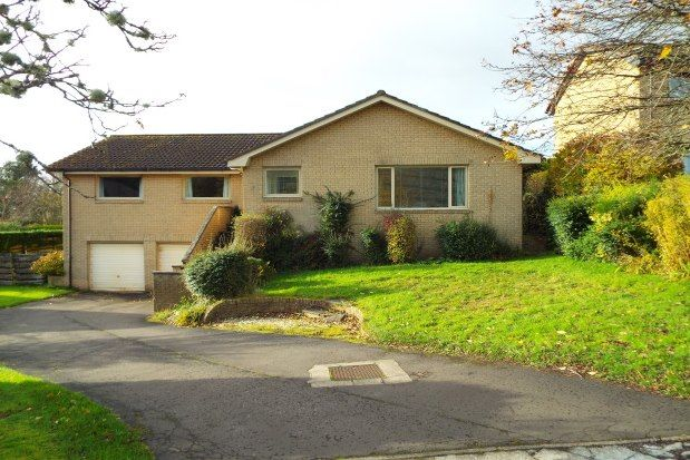 Thumbnail Bungalow to rent in Hopetoun Drive, Stirling