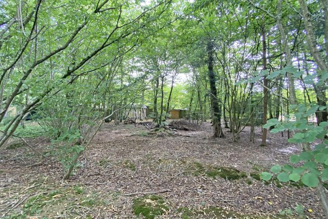 Land3A of Hempstead Lane, Hailsham BN27